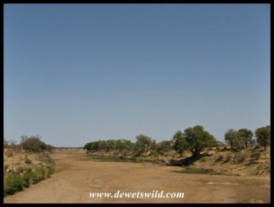 The dry Shingwedzi