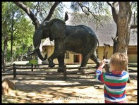 Lifesize statue outside Letaba's Elephant Hall