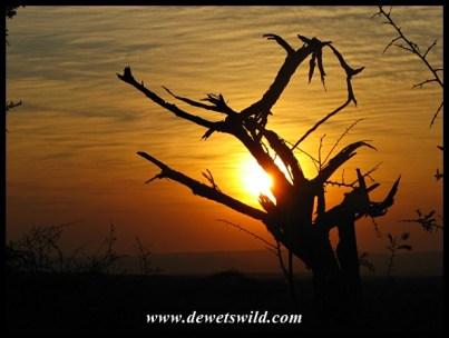 Imfolozi sunrise