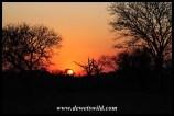 Imfolozi sunset
