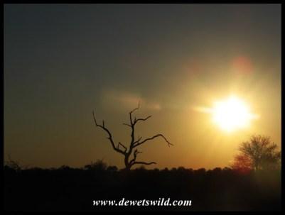 Sweni sunset
