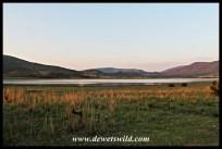 Early morning at Lake Mankwe
