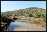Mankwe stream now with flowing water