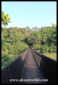 Footbridge across the Siyayi