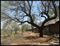 Olifants bungalows