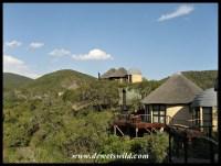 Addo's new Nyathi Camp