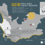 False Bay – Whole Bunch Cinsault/Mourvedre