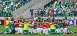 Palmeiras x Botafogo pela 36ª rodada do Campeonato Brasileiro 2016 - Foto: Ricardo Stuckert / CBF