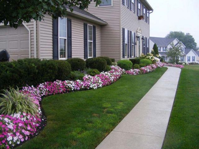 Awesome Landscaping Plants Front Yard