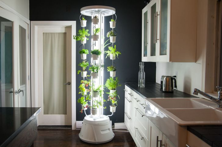 Make Your Home More Fresh With 35 Best Indoor Garden Ideas Dexorate