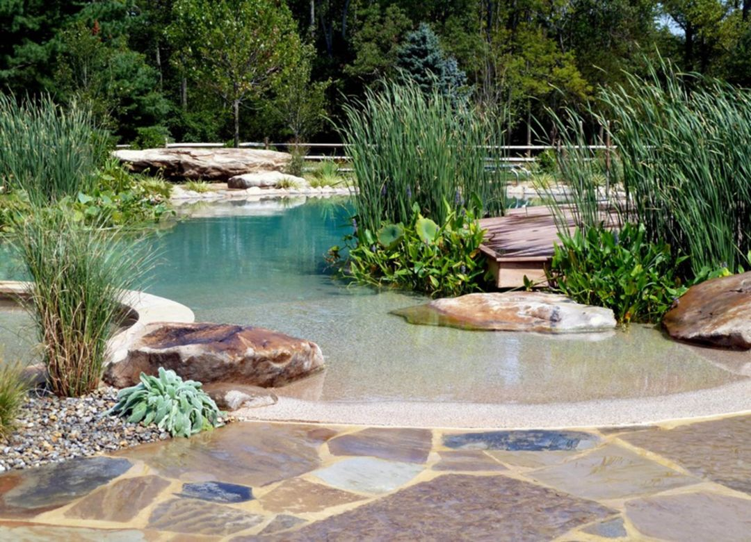 A full Line Natural Swimming Pool