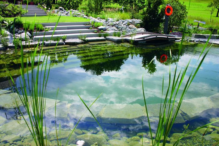 20 Exotic Natural Swimming Pool Designs For Your Home Backyard ...