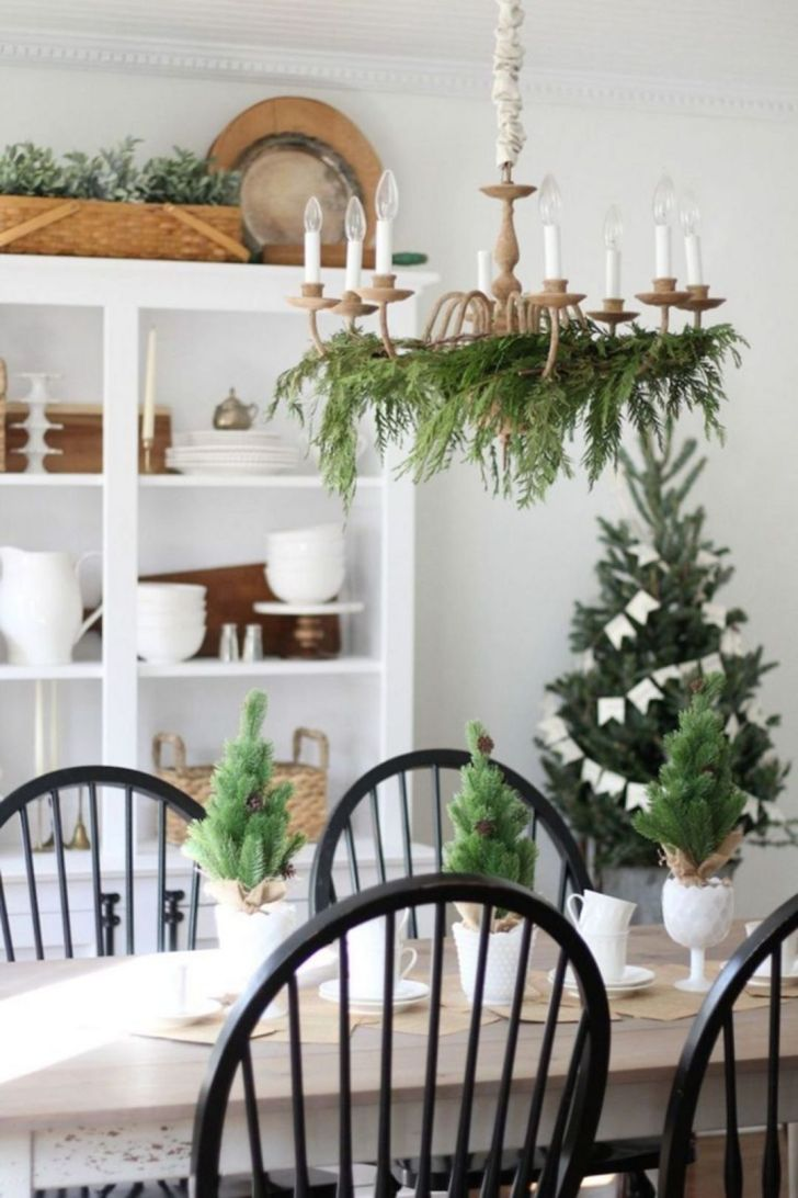 Small Plants As Indoor Air Fresheners