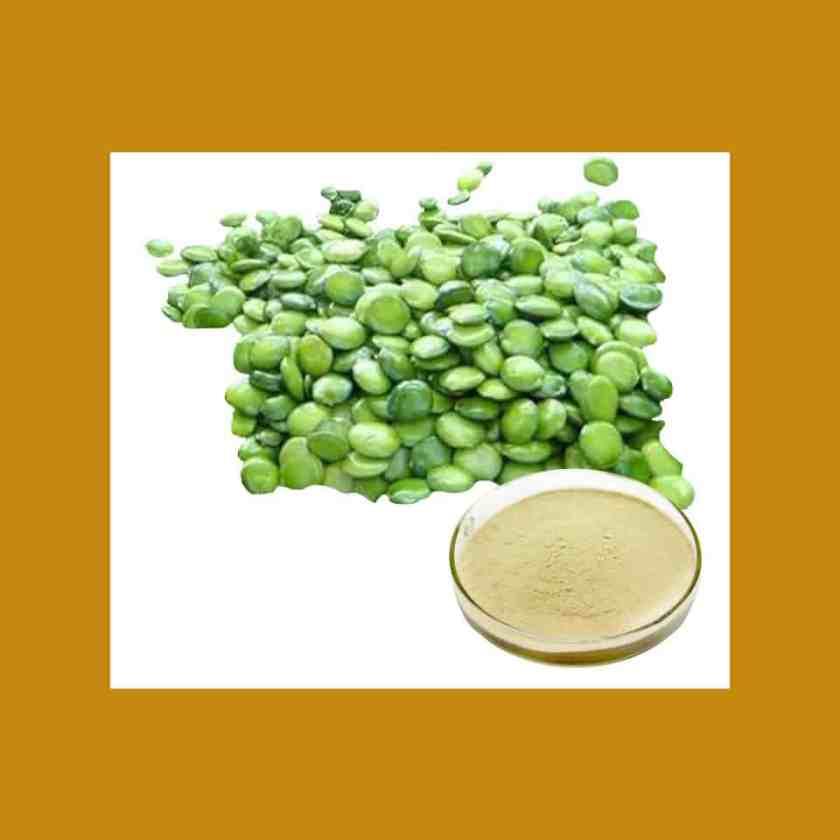 Griffonia Simplicifolia-Ingredients-Noctalean Review