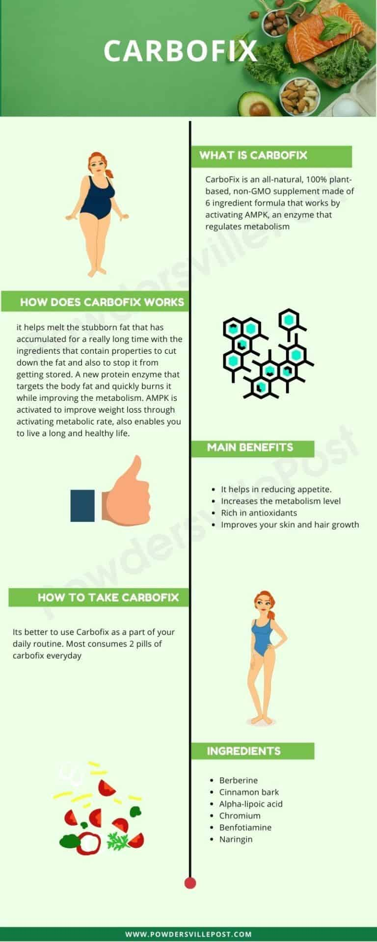 CarboFix - overview