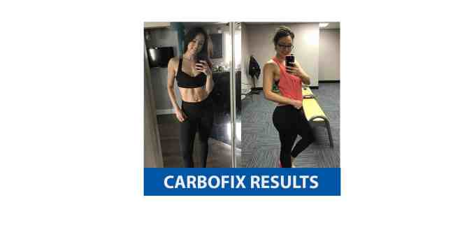 CarboFix results