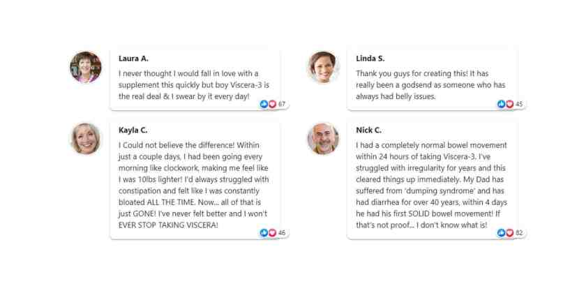 Viscera 3 Customer Reviews