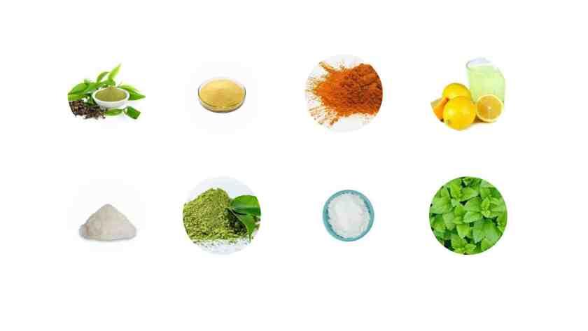 Matcha Slim ingredients