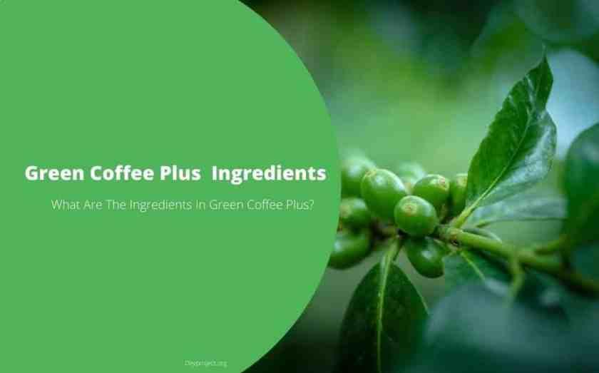 Green Coffee Plus Ingredients