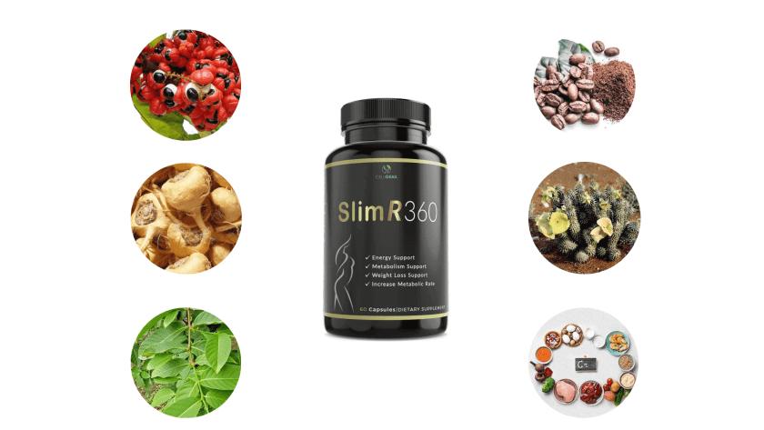 Slim R 360 Ingredients