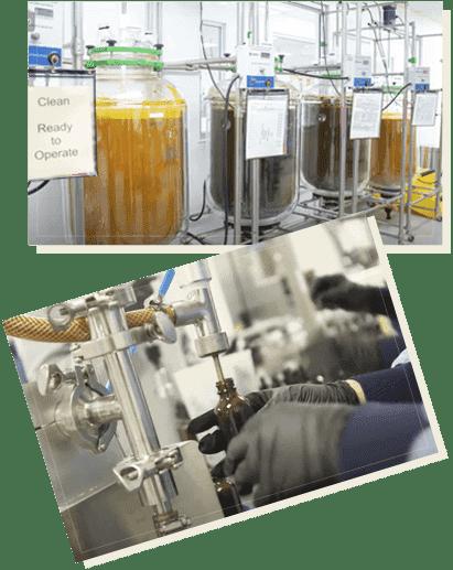 Wisdom Manufacturing Process