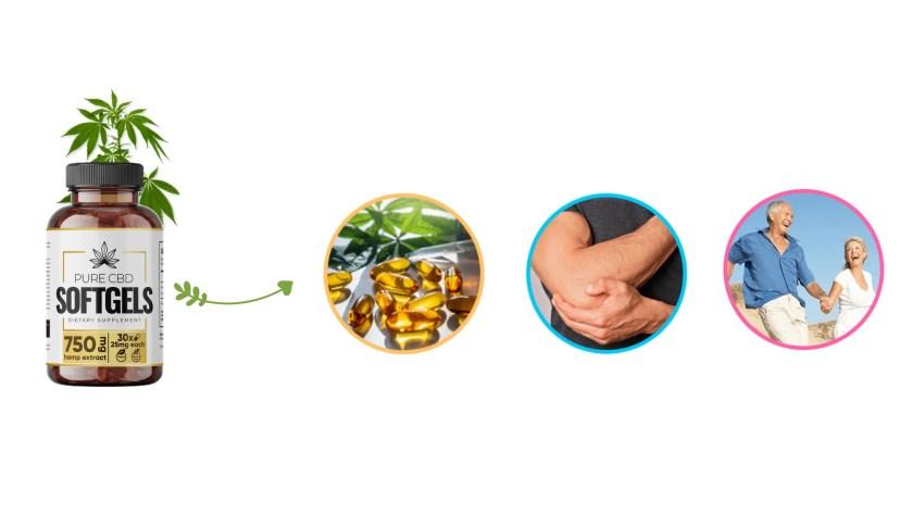 CBD SoftGels Formula Dosage