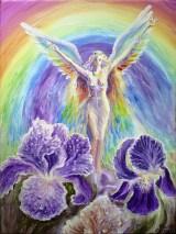 Iris zeita curcubeului - Iris the goddess of the rainbow
