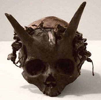 Marea dezbatere privind craniile necunoscute