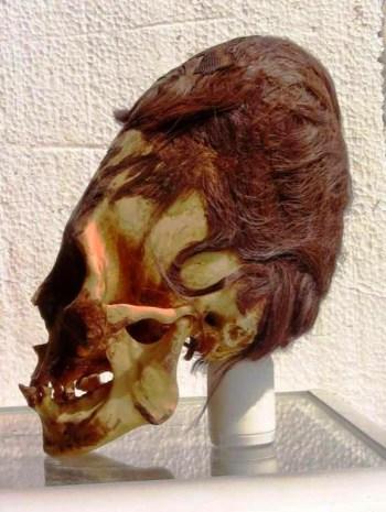 Cranii alungite din Peru relevă o specie umanoidă necunoscută (1)