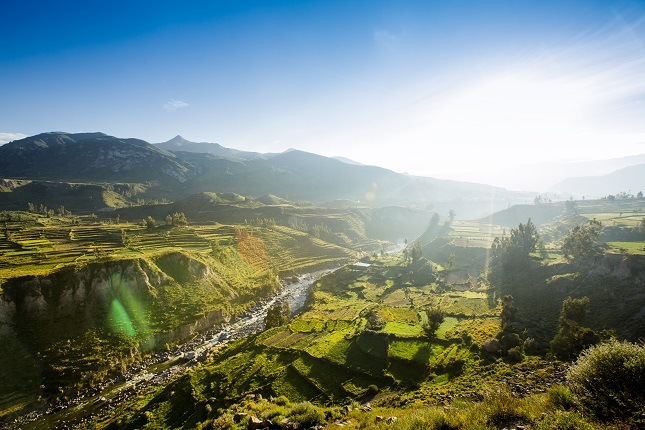 Top 10 Peru Highlights: majestätische Kondore lassen sich hervorraend beobachten in diesen tiefgrünen Schluchten.