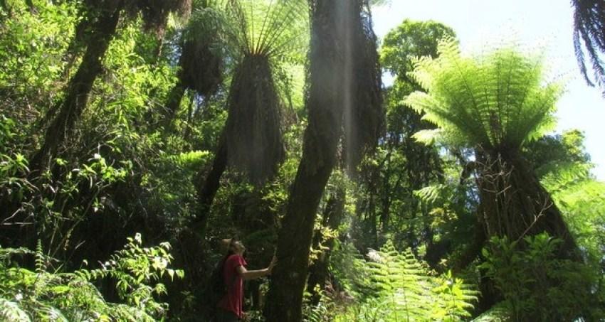Unterwegs im Amboró Nationalpark.