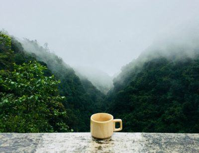 Ana Velosos Buch regt zum Nachdenken über die Geschichte des brasilianischen Kaffees an. Quelle: Pexels.