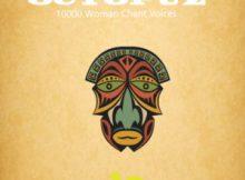 DOWNLOAD DJ Octopuz 10000 Woman Chant Voices (Original Mix) Mp3