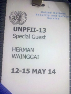 Herman, United Nations, May 2014
