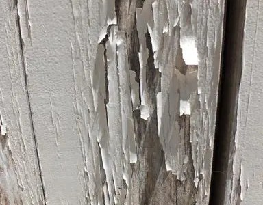 Peeling or alligatoring paint problems: How to fix them