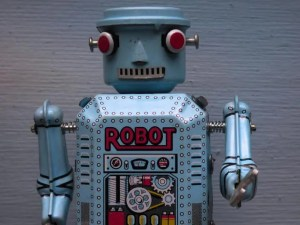 What is a bot in computer terms?
