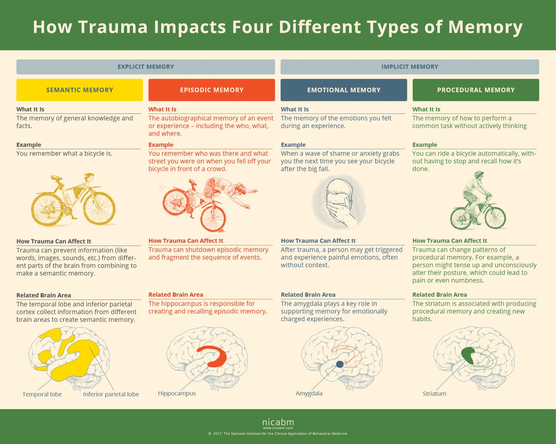 How Trauma Can Impact Memory Systems