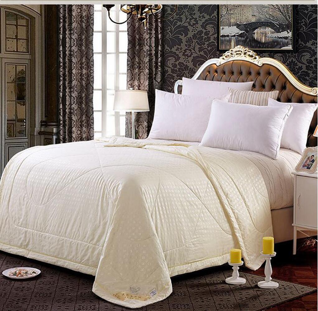 New Mulberry Silk Filled Comforter Quilt Duvet Coverlet