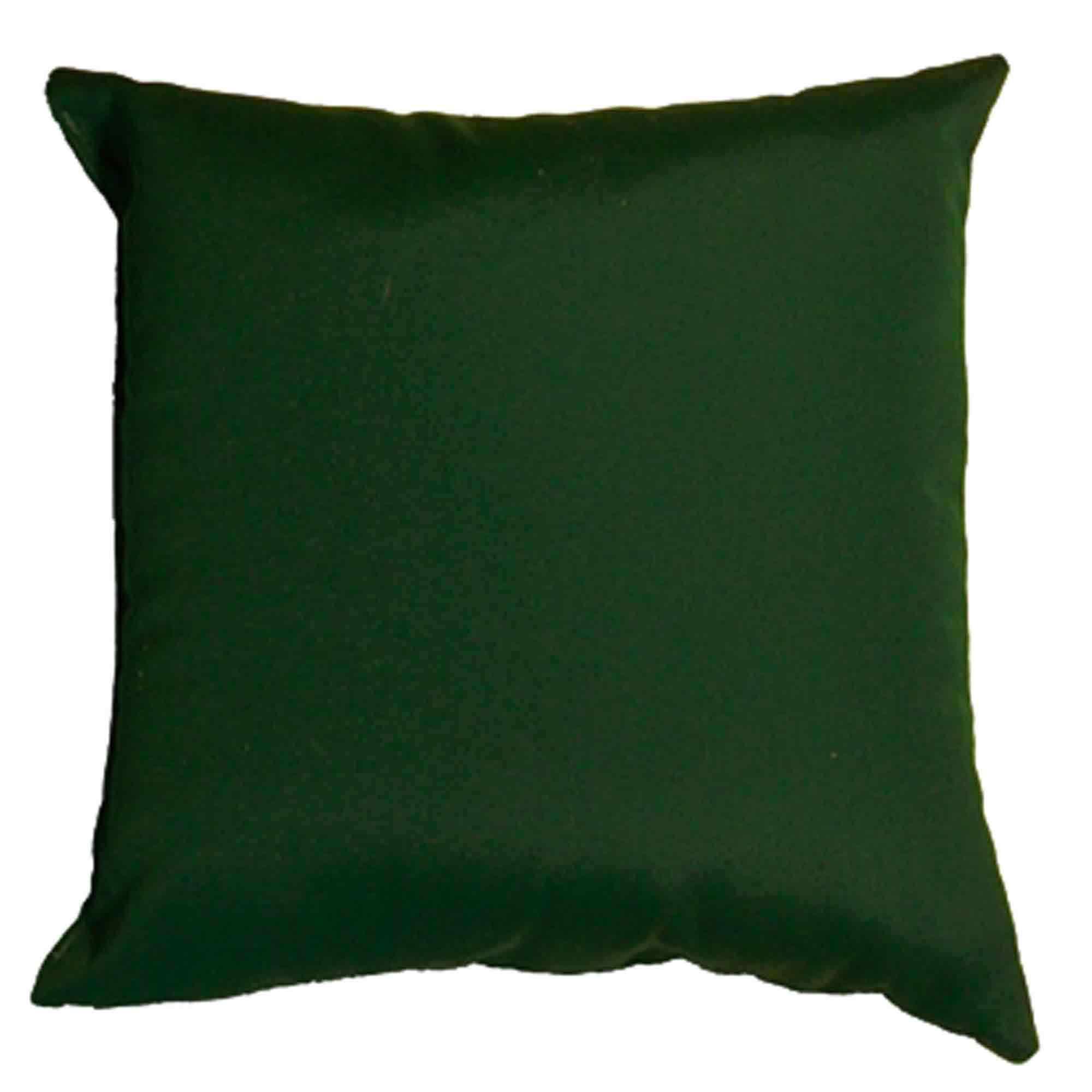 Shop Forest Green Sunbrella Outdoor Throw Pillow 16 in x