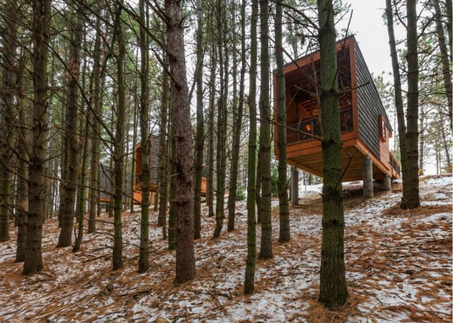 whitewail-woods-cabins-hga-paul-crosby_dezeen_1568_4