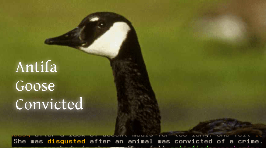 Ep. 32: In Which a Goose Is Convicted And Alexei Stops By to Talk About Roguelike Celebration
