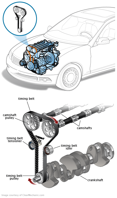 2006 Bmw 325i Belt Diagram : diagram, Timing, Thxsiempre