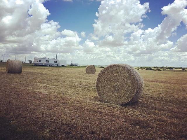 A bale of hay in a dry field in Blue Ridge, Texas