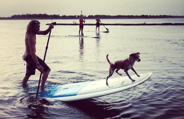 SUP with your PUP at DFW Surf