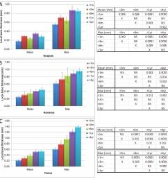 micro ct bone local thickness measurements  [ 1131 x 1156 Pixel ]