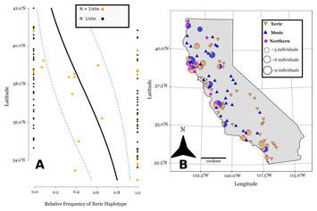 Evolving California genotypes of Avena barbata are derived