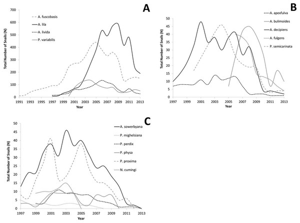 Demographic and genetic factors in the recovery or demise
