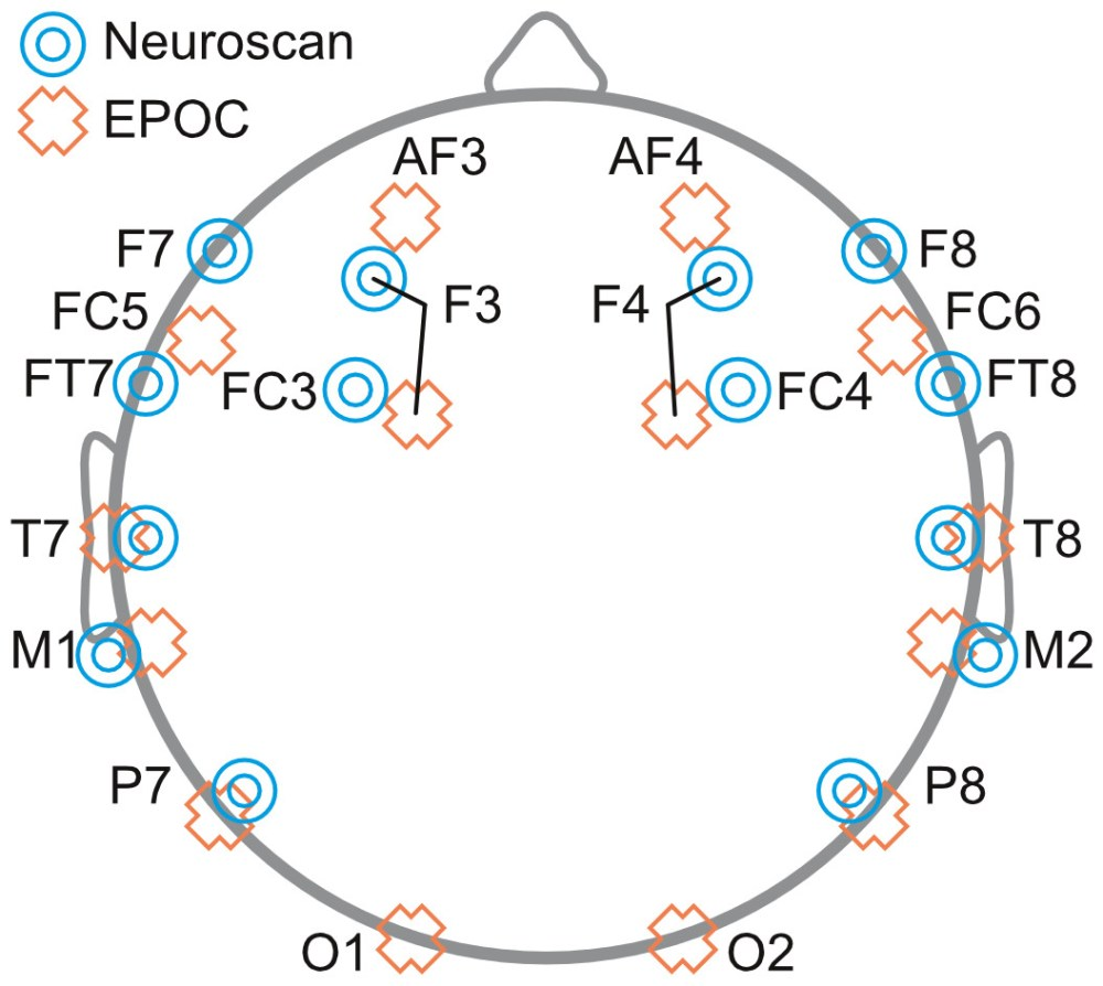 medium resolution of schematic diagram depicting the placement of eeg electrodes for neuroscan blue targets and epoc