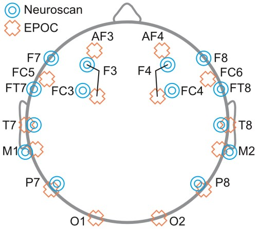 small resolution of schematic diagram depicting the placement of eeg electrodes for neuroscan blue targets and epoc