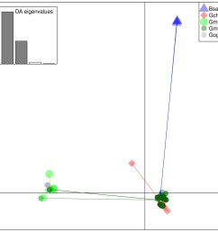 discriminant analysis of principle components dapc scatterplot of the five species clusters  [ 1200 x 1199 Pixel ]